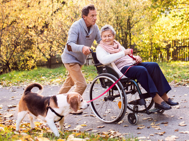 senior-man-woman-in-wheelchair-and-dog-in-autumn
